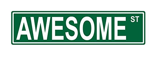 "Awesome street sign 24"" x 6"" ALUMINUM metal sign"