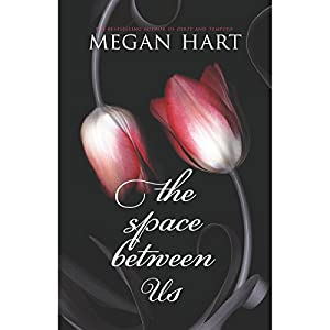 The Space Between Us Audiobook