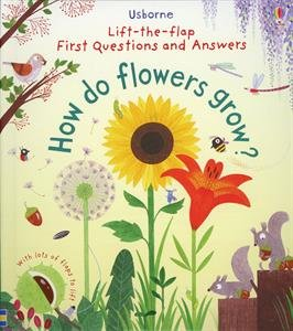 lift-the-flap-first-questions-and-answers-how-do-flowers-grow