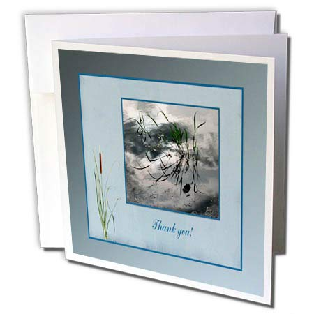 3dRose Beverly Turner Thank You Design - Thank You, Frog in a Pond Photo, Cattails Accent, Blue Frame - 6 Greeting Cards with envelopes (gc_286999_1)