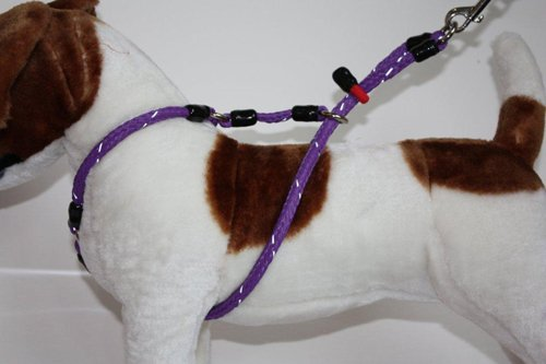 Xtreme No-Pull Harness for dogs 35-55lbs - animal-friendly with increased level of comfort and control - Medium - Purple