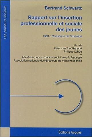 Livres Rapport sur l'insertion professionnelle et sociale des jeunes pdf, epub