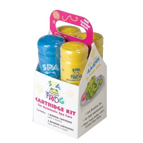 King Technology SPA Frog Cartridge Kit, Bundled with Floating Buoy Üben Pool Thermometer