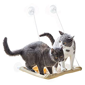 Astounding Cat Window Perch Cat Hammock Bed Window Seat With Durable Heavy Duty Suction Cups Cat Bed Holds Up To 50Lbs Extra 2 Suction Cups Pet Resting Seat Dailytribune Chair Design For Home Dailytribuneorg