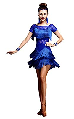 Honeystore Women's Latin Dress Lace Pattern Tiered Tassel Flapper Costume Dress