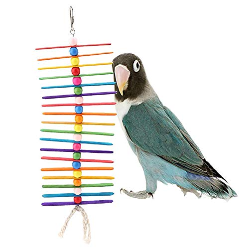 cmboom Rainbow Bird Toy Parrot cage Craft Cages Popsicle Sticks Beads Bird Toy, Bright Colors, Great for Chewing