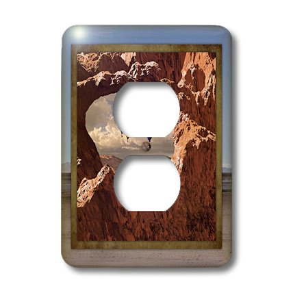 3dRose lsp_41300_6 Two Plug Outlet Cover with Hot Air Balloon in The Southwest by 3dRose