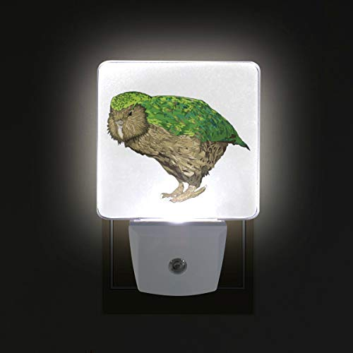 Kakapo New Zealand Bird LED Night Lights with Auto Dusk to Dawn Sensor, Plug-in Warm White Lamp for Nursery Hallway Kids ()