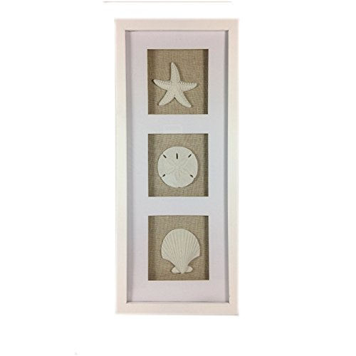 Fish Shadow Box (Coastal Beach Framed Sandstone Sea Shells Shadowbox Vertical Wall Art - Scallop, Starfish, Sand Dollar - 17-3/4-in)