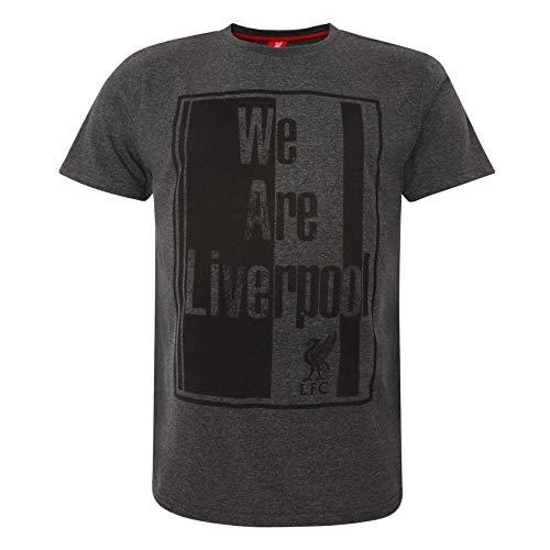 0e8b2d15213b8 Liverpool FC Grey Mens Soccer Charcoal Marl Jersey SS19 LFC Official