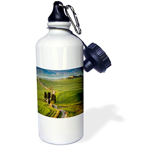 3dRose Danita Delimont - Italy - Cypress trees and winding road to villa near Pienza, Tuscany, Italy - 21 oz Sports Water Bottle (wb_277543_1) by 3dRose