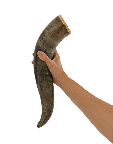 AleHorn Handcrafted 12' Natural Viking Drinking Horn with Stand