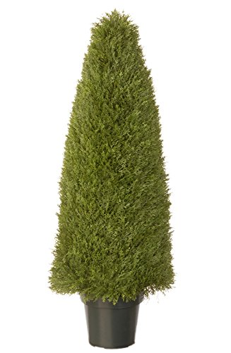 National Tree Upright Juniper LCY4 48 product image