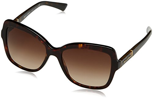 Dolce & Gabbana Women's DG4244 Sunglasses Havana / Brown Gradient - Logo Gabbana Sunglasses Dolce And