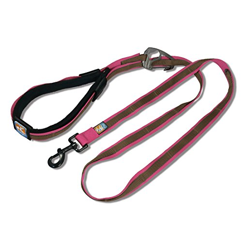 Kurgo Quantum Leash Size Honeysuckle