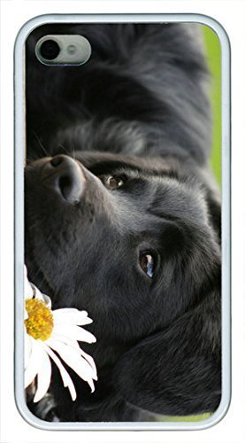 Black Dog With White Flower Custom Rubber(TPU) white Case for iphone 4 case or iphone 4s case by Cases & Mousepads wangjiang maoyi