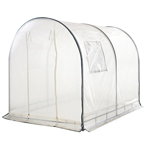 41smE1h9AhL - Abba Patio Walk in 8'L x 6'W x 6.6'H Greenhouse Fully Enclosed with Windows, White