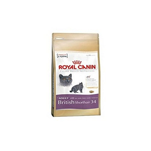 Royal Canin Adult Complete Cat Food for British Shorthair (4kg) (Pack of 6)
