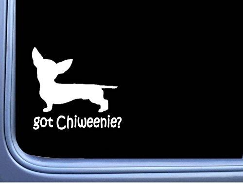 EZ-STIK Got Chiweenie J810 6 inch Sticker Dachshund Chihuahua Dog -