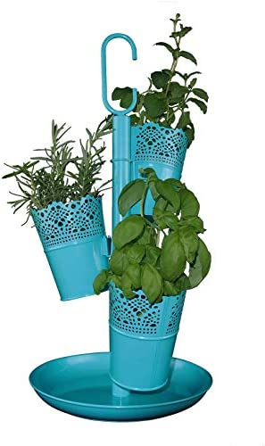 Cocoyard Herb Garden Planter Kit with Nursery Pots, Organic Basil, Parsley, and Cilantro Seeds for Windowsill and Indoor Kitchen, Great Gift for Plant Lover, Birthday, Housewarming, and Christmas