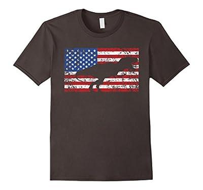 Dinosaur American Flag Shirt, Amerisaurus Rex 4th of July