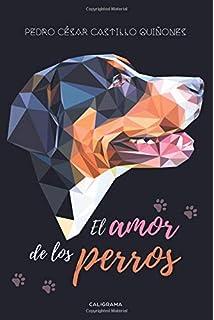 El amor de los perros (Spanish Edition)