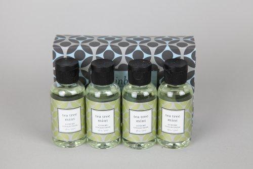 Rainbow TEA Tree Mint Fragrances (Pack of 4) (Rainbow Mint)
