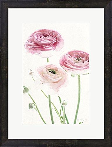 Amazon.com: Light and Bright Floral VI by Elizabeth Urquhart Framed ...