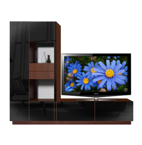 (Scarlett L TV Stand - Open and Closed Storage Space)