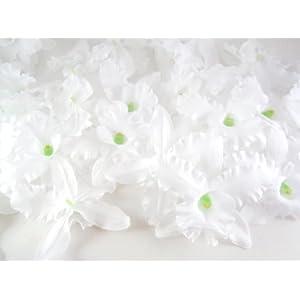 "(100) White Hawaiian Cattleya Silk Flower Heads - 3.5"" - Artificial Flowers Heads Fabric Floral Supplies Wholesale Lot for Wedding Flowers Accessories Make Bridal Hair Clips Headbands Dress 47"