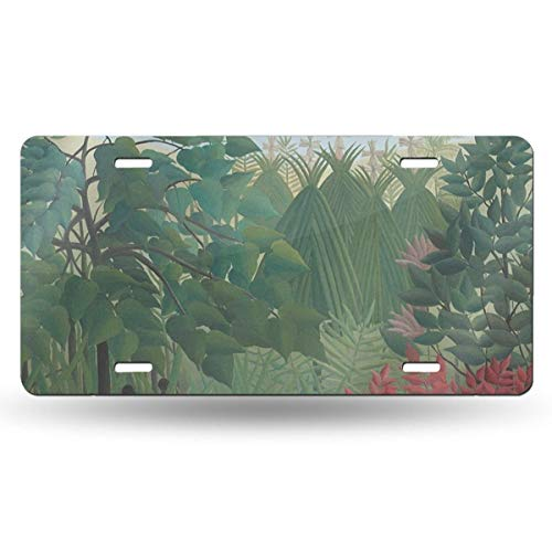 Dunpaiaa The Waterfall by Henri Rousseau Automobile (6X12) Front License Plate License/Vanity Plate -