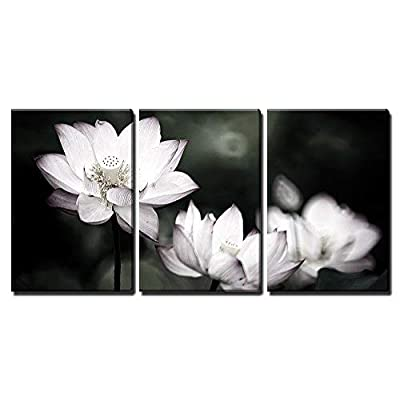 That You Will Love, Magnificent Visual, Beautiful Lotus Background Wall Decor x3 Panels