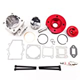 XLJOY Red 44mm Big Bore Kit Cylinder Piston for
