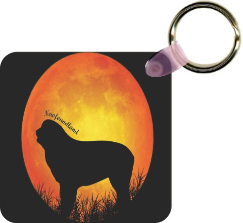 Rikki KnightTM Newfoundland Dog Silhouette By Moon Square Key Chains (Set of 2)