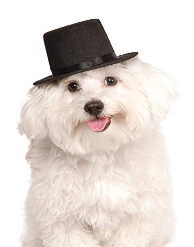 Rubie's Top Hat for Your Pet, -