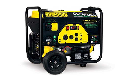 Champion 3800-Watt Dual Fuel RV Ready Portable Generator with Electric (Propane Gas Generator)