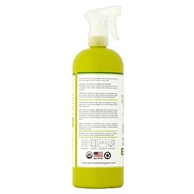 GreenShield Organic Fresh Mint Glass Cleaner, 32 Fl Oz