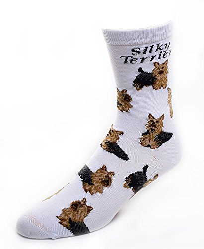 Silky Terrier Socks Poses 2,White,Medium