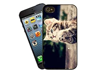 Eclipse Gift Ideas Cat Phone Case, Design 2 - Praying Tabby Kitten - For Apple iPhone 5 / 5s - Cover