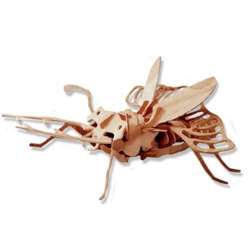 【当店限定販売】 3-D Wooden All4LessShop your Puzzle - Stagbeetle -Affordable Gift for your Puzzle Little One! Item #DCHI-WPZ-E007 by All4LessShop B004QDPK3E, シズショッピングサイト:5c1cd031 --- quiltersinfo.yarnslave.com