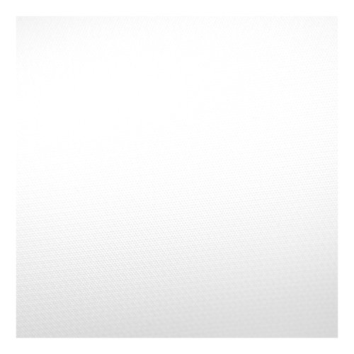 Savage 9 x 20 Infinity Vinyl Background (Matte White) by Savage