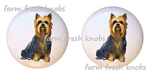 - SET OF 2 KNOBS - Yorkshire Terrier Yorkie Dog - Dogs - DECORATIVE Glossy CERAMIC Cupboard Cabinet PULLS Dresser Drawer KNOBS