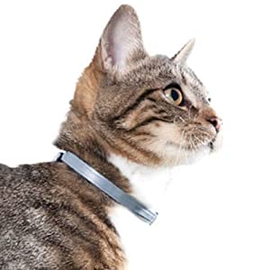 Bayer Seresto Flea & Tick 8 Months Collar for Cats