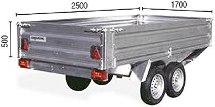 Remolque de Carga paletizable 2500 Tandem con Freno: Amazon.es: Coche y moto