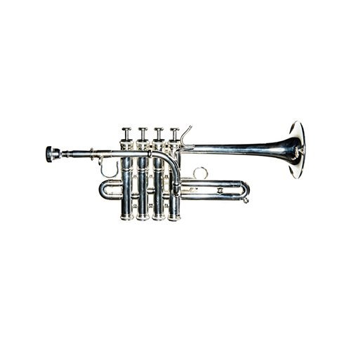 Band Directors Choice-SHOW DEMO- Piccolo Trumpet by Band Directors Choice
