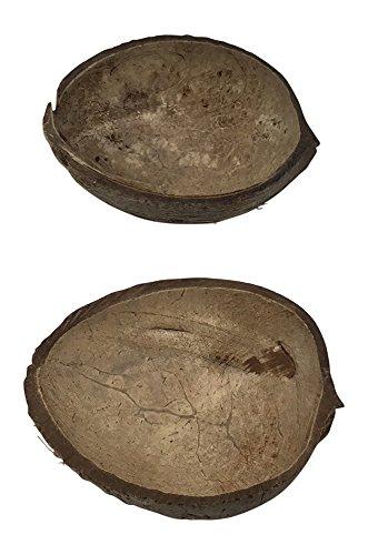 Natural Coconut Half Shell Bowl (2, (Luau Dishes)