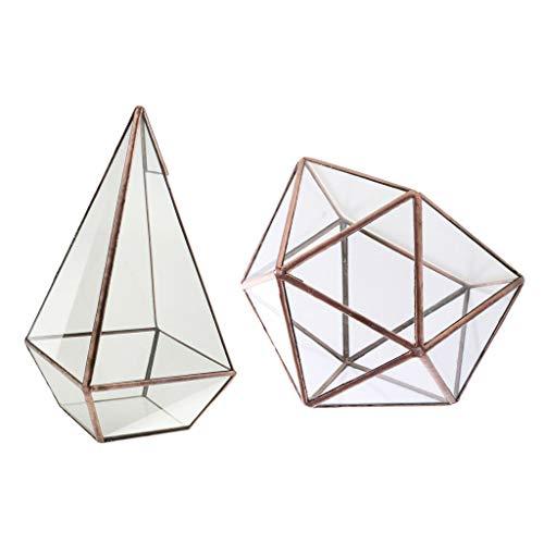 BROSCO 2pcs Tabletop Terrarium Geometric Glass Box Succulent Planter Succulent Gift
