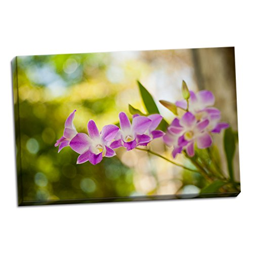 Thai Orchids, Fine Art Photograph By: Erin Berzel; One 36x24in Hand-Stretched Canvas by Gango Home Décor