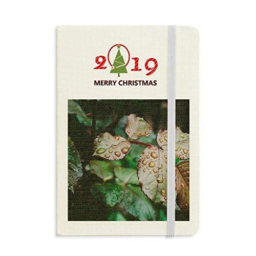 Diario con diseño de hoja de estofado, año nuevo 2019