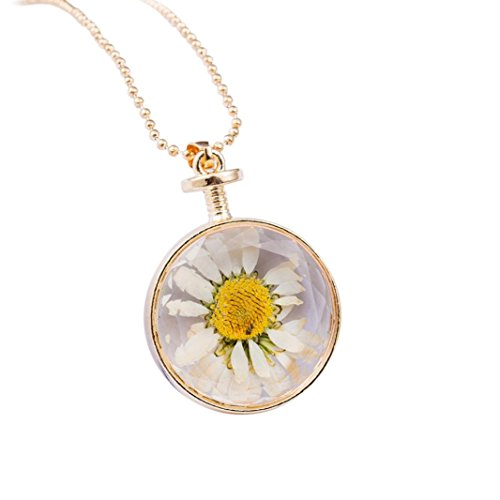 Daoroka Sunflower Necklace, Round Glass Dried Flowers Pendant Necklaces Fashion Women Alloy Necklace Jewelry (, White)